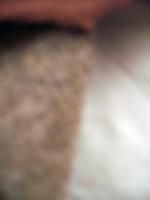 b0089115_21231023.jpg