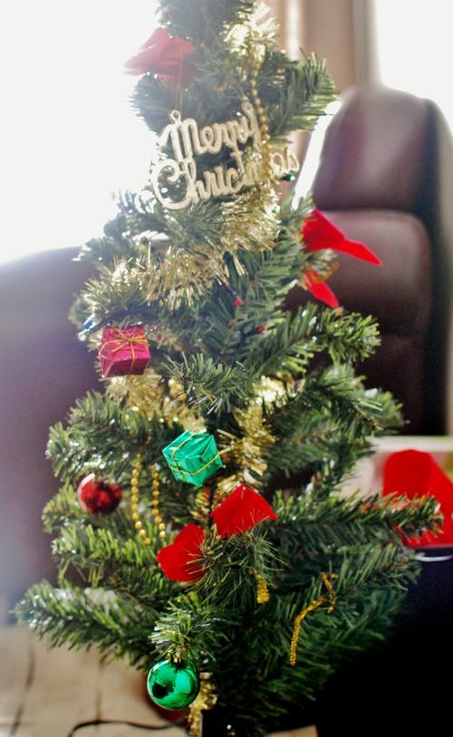 マドレーヌ・サレ ・・・そしてクリスマスパーティ2011!_d0159822_2155174.jpg