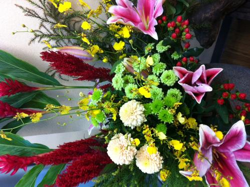 今週のお花とセール情報_a0200423_1944328.jpg