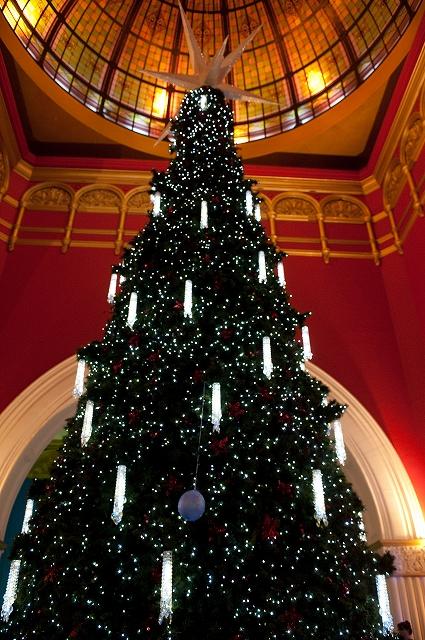 真夏のクリスマス シドニー_f0050534_7342463.jpg