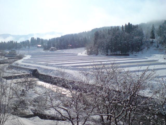 雪景色_d0182179_2004025.jpg