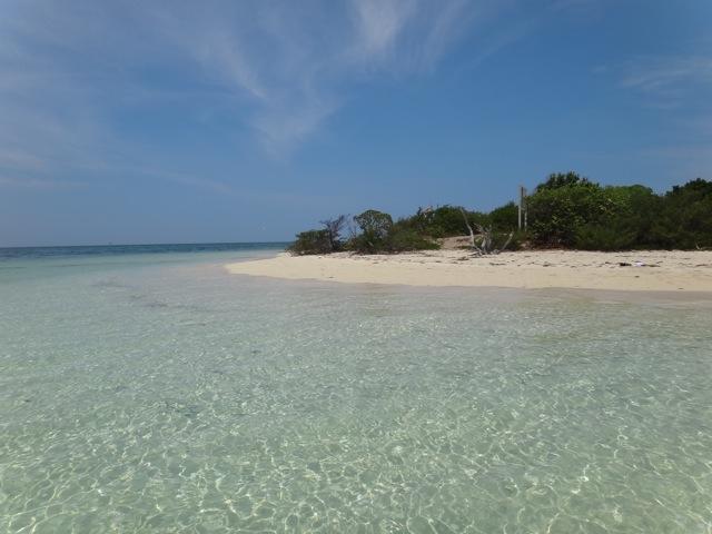 New Caledonia_b0195093_1154630.jpg