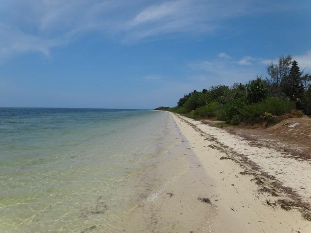 New Caledonia_b0195093_116356.jpg
