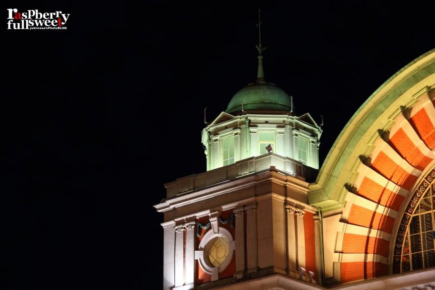 大阪市中央公会堂 / ライトアップ_b0234699_065895.jpg
