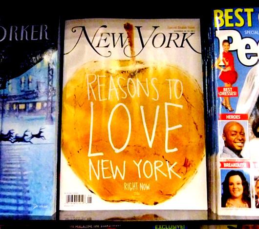 ニューヨークを愛する理由 Reasons to Love New York 2011_b0007805_21492749.jpg