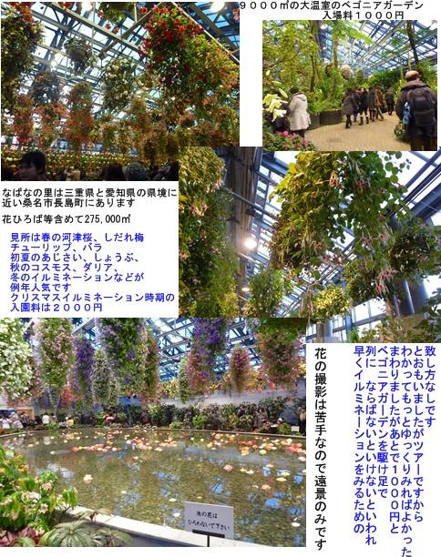 a0084343_16581377.jpg