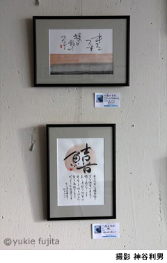 第15回サカナヘンノヒトタチ展の展示作品_c0141944_2230082.jpg