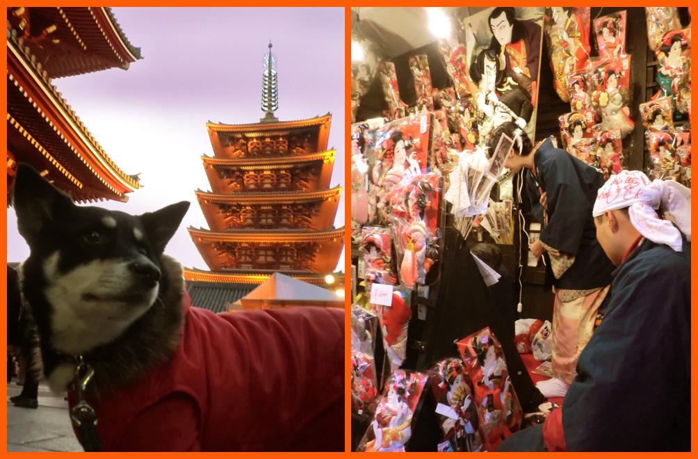 浅草寺・羽子板市へ。綺麗な姫様羽子板見たよ。_e0236072_1975084.jpg