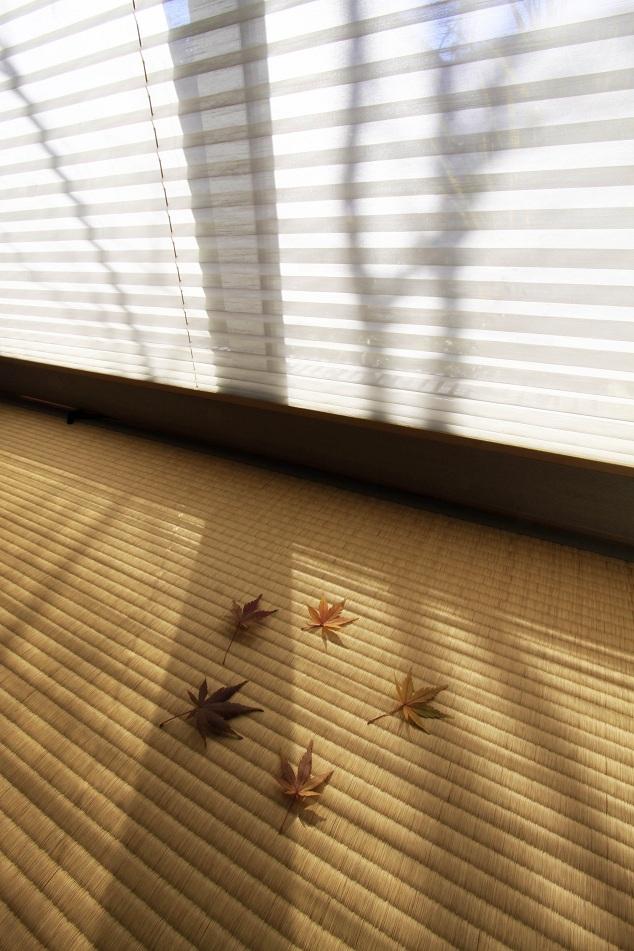 晩秋らしさを飾るモミジの葉っぱ_a0107574_21195274.jpg