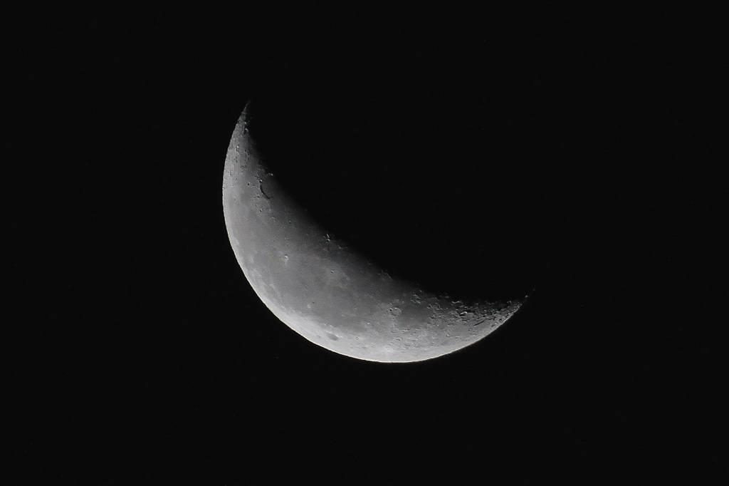 タゲリの羽根の色/月・土星・スピカ/白い富士_b0024798_5131926.jpg
