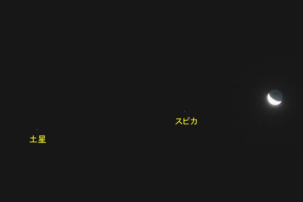 タゲリの羽根の色/月・土星・スピカ/白い富士_b0024798_513716.jpg