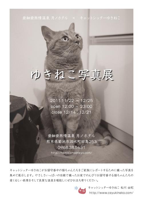 『ゆきねこ写真展』開催のお知らせ。_a0143140_041231.jpg