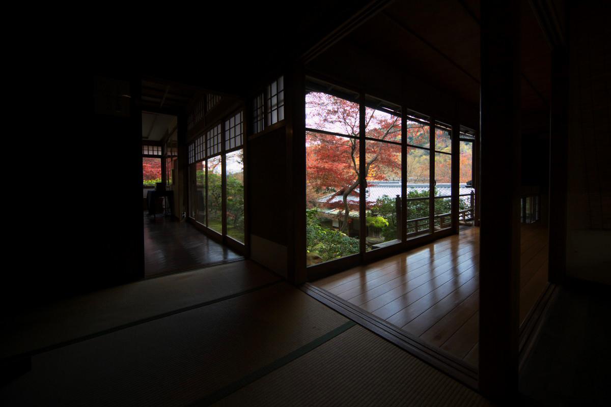 紅葉 2011 八瀬 瑠璃光院 _f0021869_2348368.jpg
