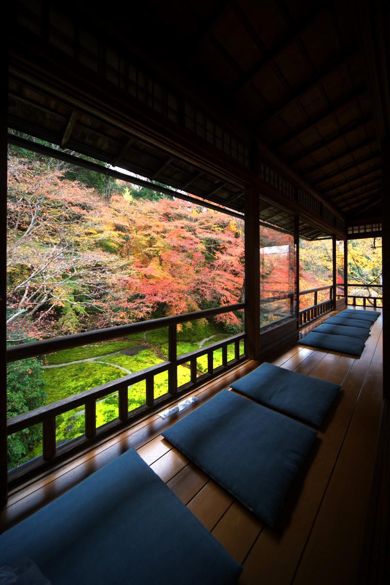紅葉 2011 八瀬 瑠璃光院 _f0021869_23484577.jpg