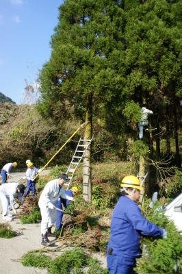 杉玉づくり 2011_f0138874_11221860.jpg