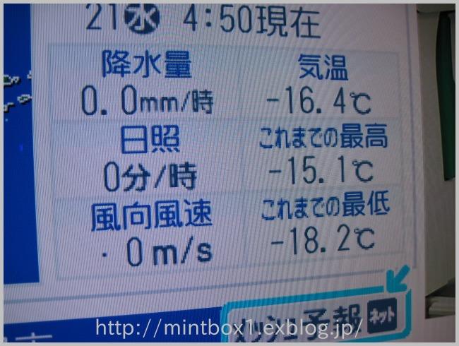 牡蠣のオイル漬け_a0008185_1717243.jpg