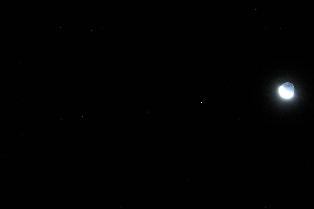 タゲリの羽根の色/月・土星・スピカ/白い富士_b0024798_6322276.jpg