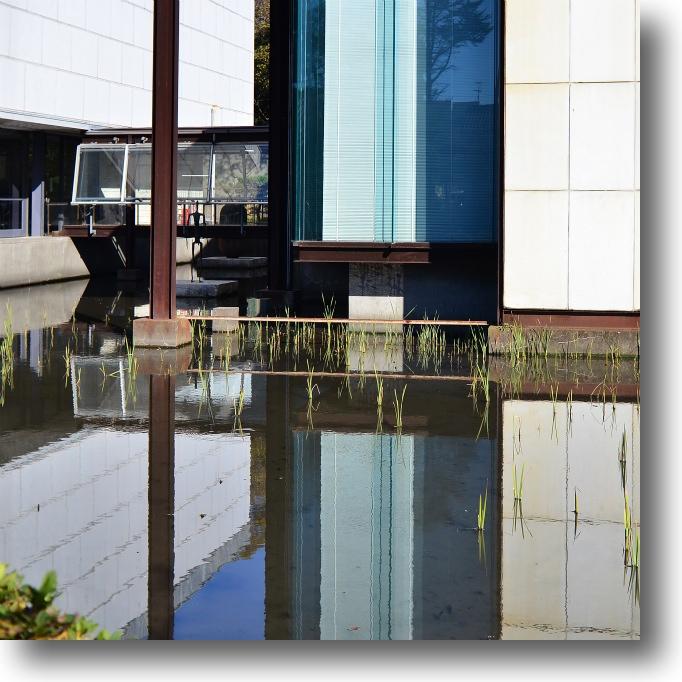 神奈川県立近代美術館/鎌倉_f0099102_1515289.jpg