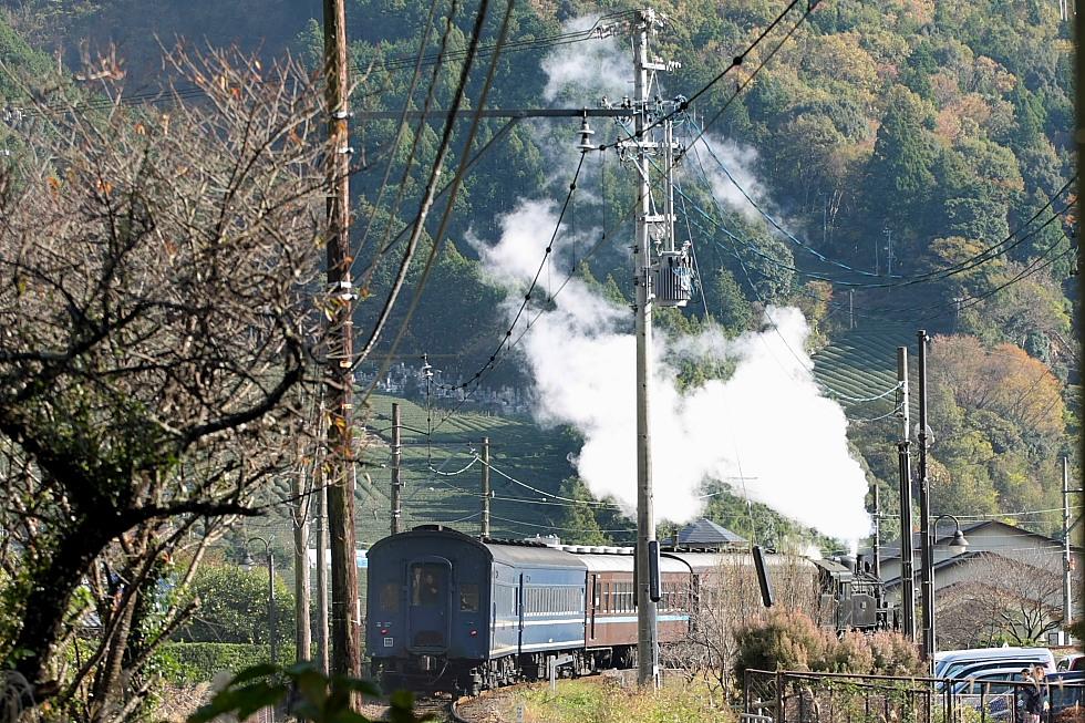 白煙と旧客 - 2011年秋・大井川 -_b0190710_22363573.jpg
