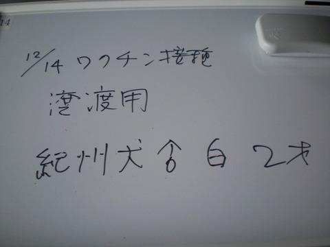 f0078320_2022339.jpg