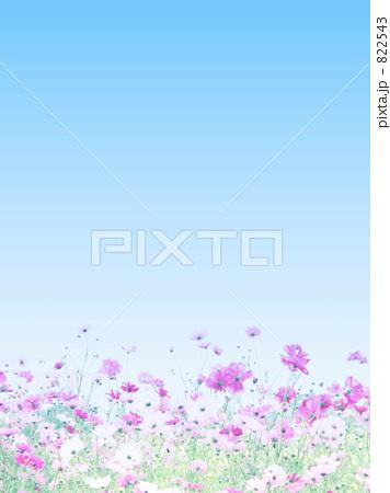 b0161652_17421963.jpg