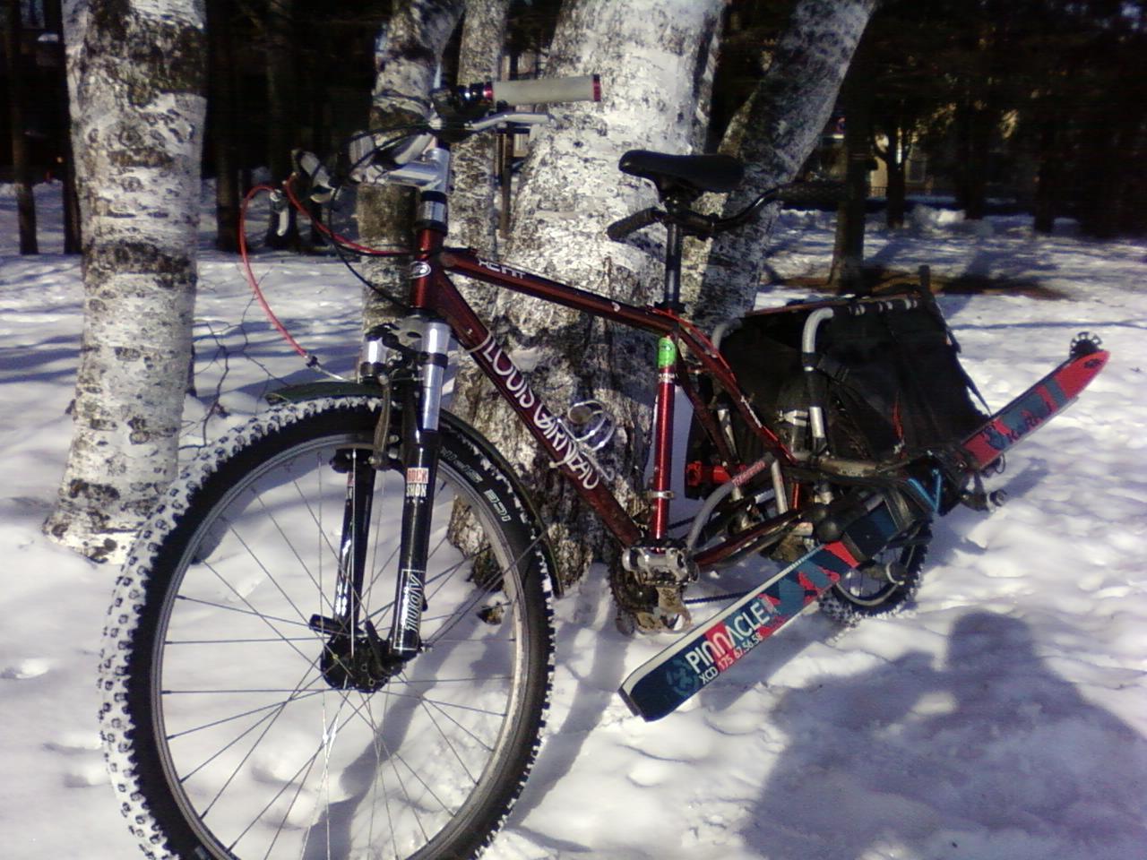 冬季仕様長尺自転車運用悲喜交々 1_d0197762_734687.jpg