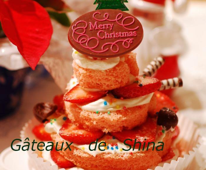 クリスマスケーキ_f0224567_2319616.jpg