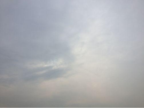 気温6度_d0118072_13262840.jpg