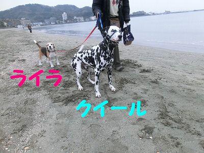 e0222588_17353259.jpg