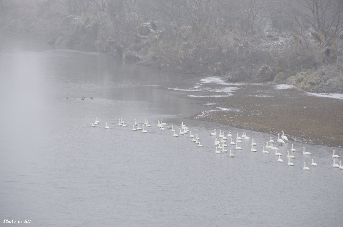 2011年12月21日 寒い一日_f0148627_2311883.jpg