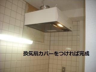 9日目の作業_f0031037_21133371.jpg