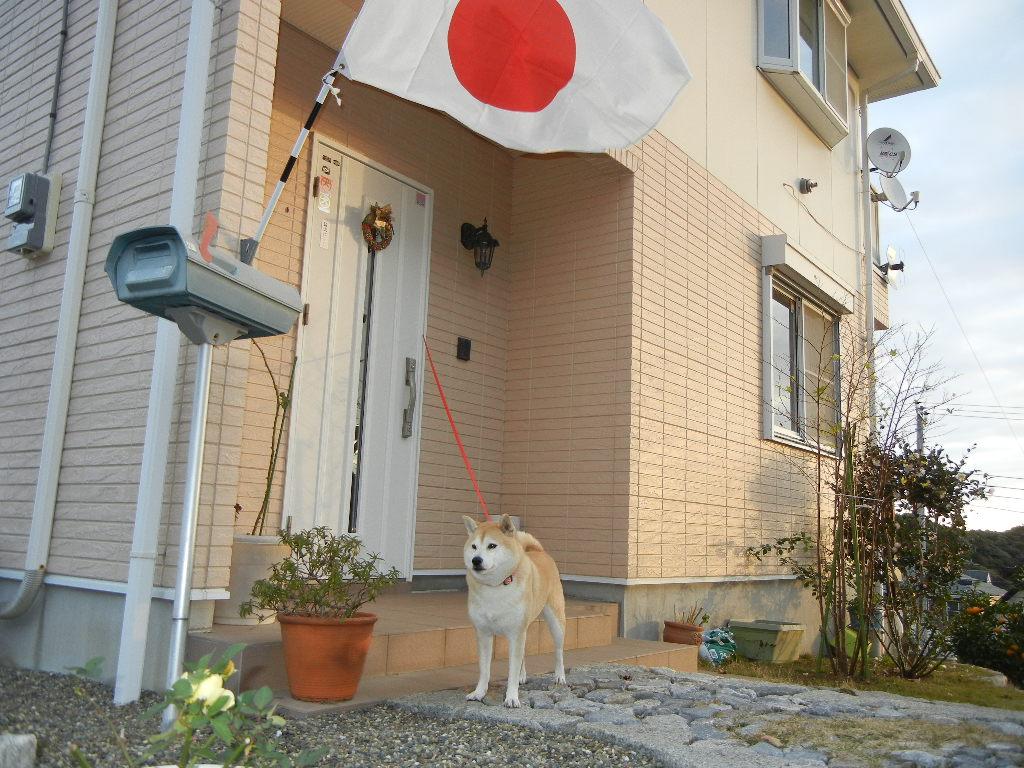 2011年12月23日(金)今日のパパご飯は・・・?_f0060461_1359820.jpg