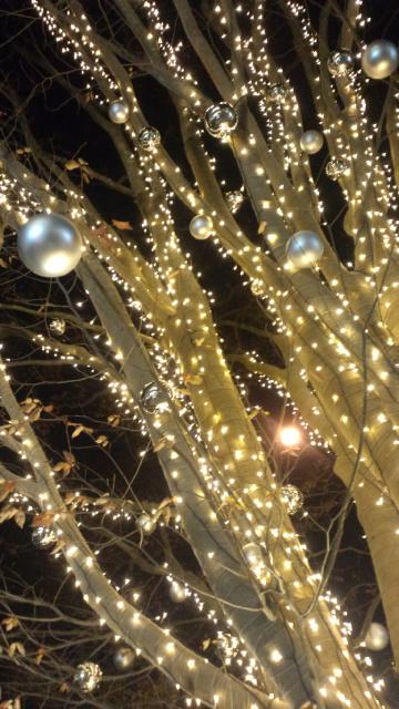 代官山 蔦谷書店+Anjinアンジン@Joyeux Noël   Heartful  Thankful クリスマスの贈り物.。.☆*†_a0053662_2301644.jpg