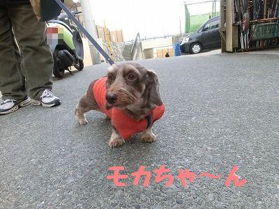 3連休デスガ・・・_e0222588_16573779.jpg