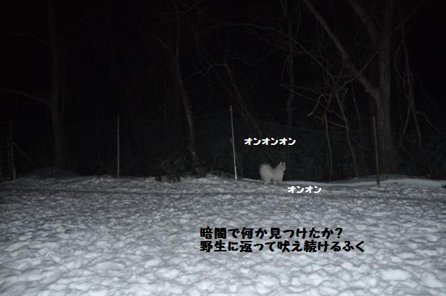 f0212597_1120332.jpg