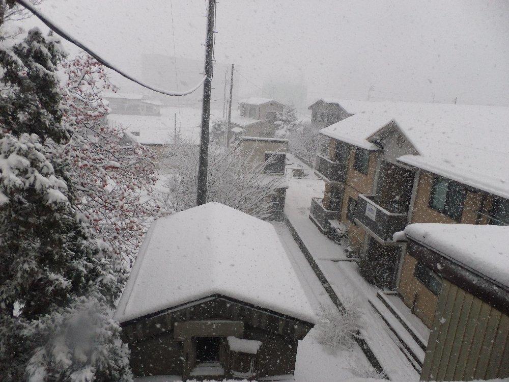雪の状況_e0087201_8583620.jpg