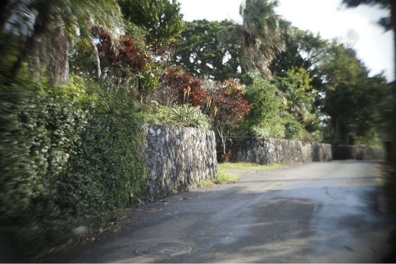 海界の村を歩く 沖永良部島2_d0147406_1013301.jpg
