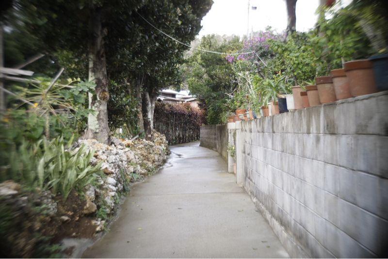 海界の村を歩く 沖永良部島2_d0147406_9532951.jpg