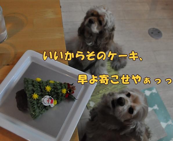 b0067012_23405091.jpg