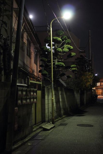 東向島  夜の「倉持帽子店」界隈_b0061717_11574048.jpg