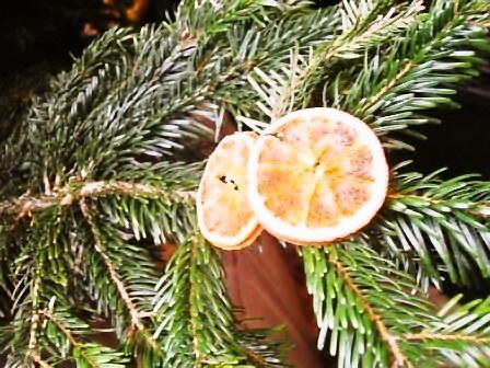 メリークリスマス!そして楽しいマーケット!_d0104926_17451450.jpg