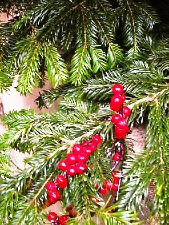 メリークリスマス!そして楽しいマーケット!_d0104926_174858.jpg