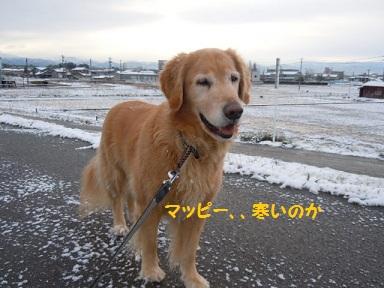 f0114128_2011946.jpg