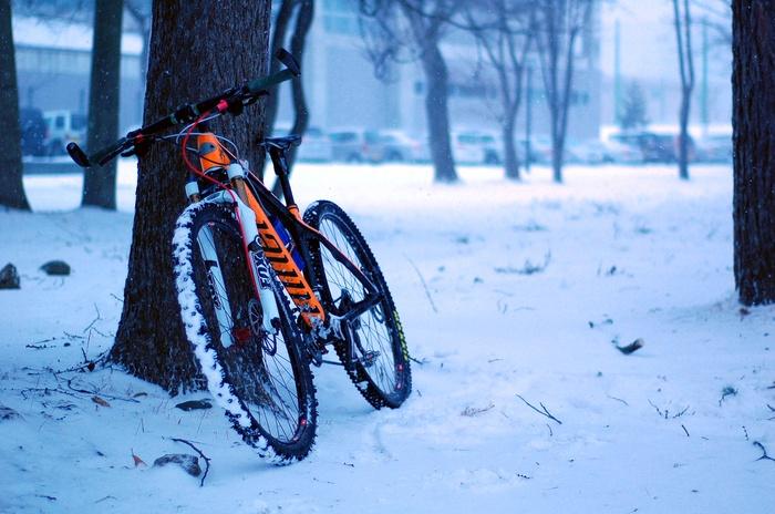 暴風雪警報_f0114954_23283829.jpg