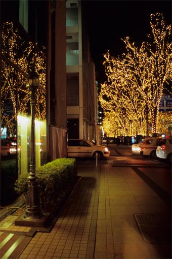 ちわりくんのありふれた一日・Merry Christmas! 2011(追記あり♪)_c0181457_16281844.jpg