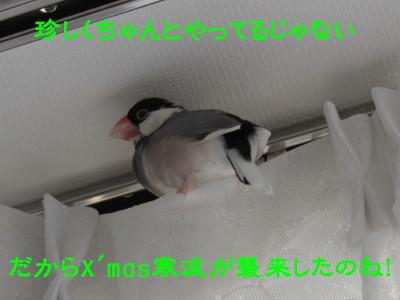 b0158061_1253026.jpg