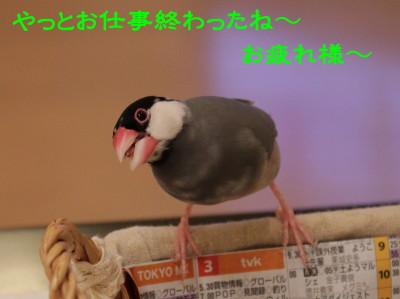 b0158061_21502243.jpg