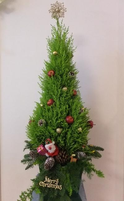 クリスマスレッスン_d0092262_8585931.jpg