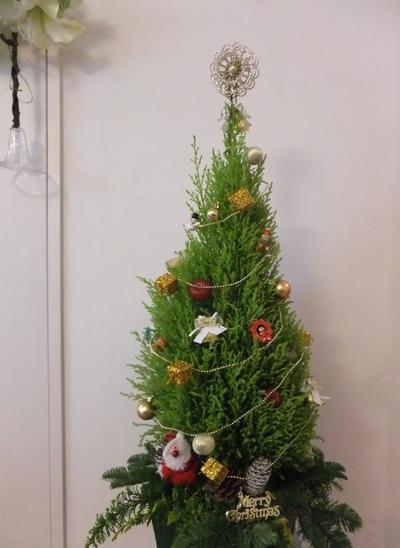 クリスマスレッスン_d0092262_902893.jpg