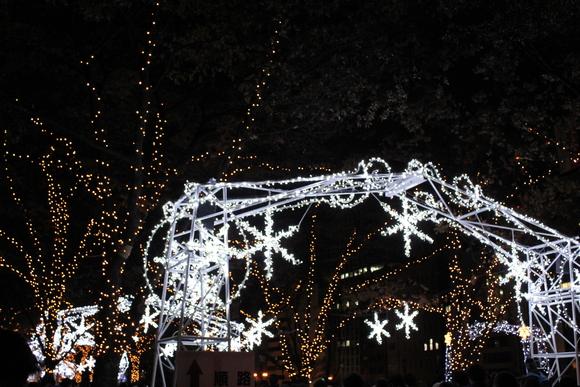光のルネサンス2011_d0202264_22852100.jpg